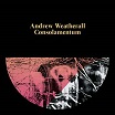 andrew weatherall-consolamentum cd