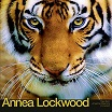 annea lockwood-tiger balm/amazonia dreaming/immersion lp