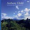 anthony child-electronic recordings from maui jungle vol 2 2lp