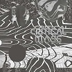 various-cherrystones presents critical mass: splinters from the worldwide new-wave, post-punk & industrial underground 1978-1984 2lp