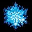 coil-the snow cd