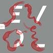 evol-flapper that 12