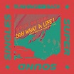 gibson brothers-ooh what a life! (ger janson & shan edits) 12