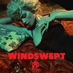 johnny jewel-windswept cd