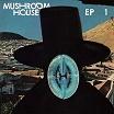various-mushroom house ep1 12