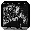 nurse with wound-the swinging reflective ii 2cd