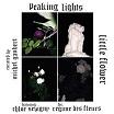 peaking lights-little flower 12