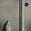 persuader-varblommor 12
