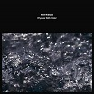 phill niblock-rhymes with water lp