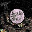quicksails-fleurs de la lune lp