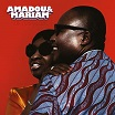 amadou & mariam la confusion because music