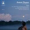 amen dunes-love LP