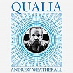 andrew weatherall qualia höga nor
