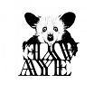 aye aye-s/t lp