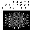 brainwaltzera the kids are ai analogical force