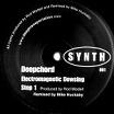 deepchord-electro magnetic dowsing 12