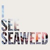 the drones-i see seaweed CD