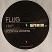 flug-cognitive process 12