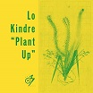 lo kindre-plant up 12