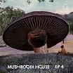 various-mushroom house ep4 12