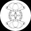 pfirter-double existence 12
