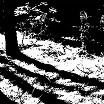 reggy van oers-transcranial 12