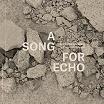 ricardo donoso-a song for echo lp