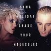 soma holiday-shake your molecules EP