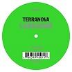 terranova-labrador 12