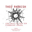 theo parrish long walk in the sun sound signature