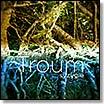 troum-syzygie CD