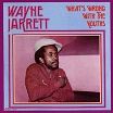 wayne jarrett what's wrong with the youths jah life