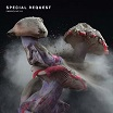 special request fabriclive 91 fabric
