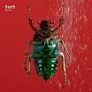 steffi-fabric 94 cd
